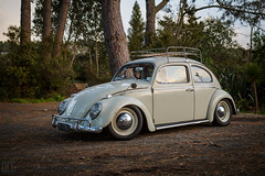 VW Beetle (Dorian-G) Tags: vw volksagen beetle low slammed stance aircoole aircooled sigma