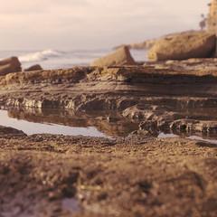 San Diego Day Trip (japheth-crawford) Tags: sunsetcliffsnationalpark sunsetcliffs sunset ocean water beach lowtide tide pools