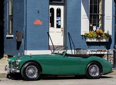 Austin Healey (J Wells S) Tags: austinhealey classiccar historiccar vintagecar sportscar streetscene urban urbanstreetscene mainstreet covington kentucky cincinnati ohio mainstrasse