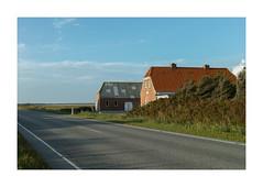 On Route 181. Denmark (2016) (csinnbeck) Tags: rute181 route 181 rute denmark sigma dp2m dp2 merrill foveon husby klit august 2016 road horizon middle countryside north sea vesterhavet farm house red brick bricks grd landbrug