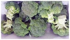 W36 Organic Broccoli