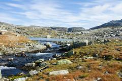 IMG_2273 AEFR (JarleB) Tags: haukelifjell rldal fjell hyfjellet hardanger hordaland water tur fjelltur hst autumn september middyr ulev haukeliseter haukeli mountain