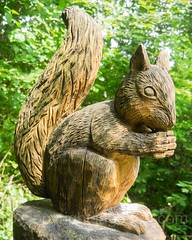 Eichhrnchen Wood Sculpture, Emmen, Lucerne, Switzerland (jag9889) Tags: sculpture jag9889 wood reuss 20160727 squirrel publicart centralswitzerland switzerland emmen outdoor 2016 europe igemmenimwald cantonlucerne alpine art artist ch carver figurenweg forest foresttrail helvetia holz holzskulpturenweg innerschweiz interessengemeinschaft kantonluzern lu landscape lucerne luzern reussuferweg riverbank schnitzer schweiz skulptur skulpturenweg streetart suisse suiza suizra svizzera swiss woodcarver zentralschweiz
