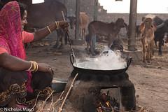 Boiling Mawa (Nick Mayo/RemoteAsiaPhoto) Tags: cooking wok cow headscarf gujarat bracelet hearth india muli