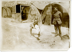 Soldiers playing with Snowy the cat, the New Zealand Tunnellers' mascot, in Dainville, France. A row of huts can be seen in the background. Photograph taken 16 July 1918 (Archives New Zealand) Tags: archivesnewzealand archives archivesnz ww1 1918 worldwarone worldwari henryarmytagesanders snowy cat animals mascot whitecat