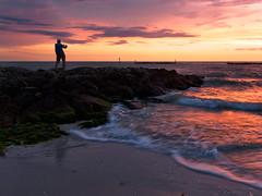 Scott (Garen M.) Tags: dusk florida flowers gulf lumix20mmf28 marcoisland marcoislandhouse ocean olympusomdem1 sand zuikopro1440mmf28 bay beach flora southernflorida sunset