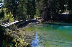 DSC_6559 (AmitShah) Tags: banff canada nationalpark