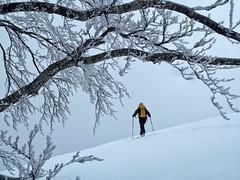 Scialpinismo Terminillo - Monte di Cambio da Piedelpoggio