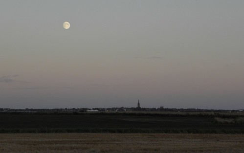 Montrose moon skyline