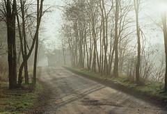 229_23a (filemon_pl) Tags: autumn 200 lodz nikkormat