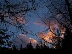 Sunset Clouds in Silhouette (trins) Tags: trees sunset nature weather silhouette clouds oregon natural bluesky gresham sunsetcloudsinsilhouette