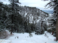 Bear Mountain 2-21-13