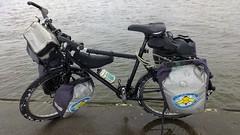13020154 (szczym) Tags: trip winter bike poland polska zima rower bzzz pszczoy wyprawa mid robaki jedziemynamiodzie wyprawawobroniepszcz rolnikuszanujpszczoy