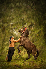 Kuda Silat (syukaery) Tags: horse man indonesia nikon action westjava fighting kuda silat 105mm sumedang d700