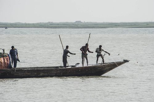 Coast guards pulling out illegal nets in Bhola, Bangladesh. Photo by Finn Thilsted, 2013.
