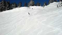 2013-03-07_09-18-29_440 (MtHoodMeadows) Tags: snow bluebird mthoodmeadows newsnow powdergallery