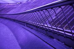 CN Tower observation deck (marianna_a.) Tags: red toronto fence observation high cntower purple screen deck railing hff mariannaarmata