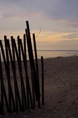 Fenced off (L*Ali) Tags: winter sunset cold beach water skyline fence sand feather lakeontario lali darlingtonprovincialpark sigma1770mmf28macro nikond7000