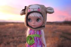 Sunset on the Skagit Flats (jessi.bryan) Tags: sunset doll skagit blythe skagitflats customblythe wingsinflight lalatroop vainilladolly vainilladollycustom vainilladollyblythe lalatroopsheephat lalatroophelmet