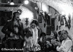Pure Flamenco (Danieldevad) Tags: show bw espaa music art canon dance movement spain arte dancing artistic song expression joy creative dancer movimiento andalucia toque caves step granada musica feeling lust emotional andalusia gypsy baile flamenco intensity sacromonte palmas cueva sentimiento cante espectaculo bailaor emocion romani gitano zambra tarantos danieldelgado danieldevad