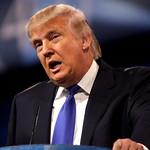 From flickr.com: Donald Trump {MID-66192}