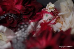 LD elf 3 (cureilona of Lightpainted Doll) Tags: red sculpture woman art female ball photography miniature doll artist dolls body handmade feminine ooak hans bisque mini redhead tiny figure bjd collectible ilona porcelain enchanted collectable puppe automata bellmer poupe jointed poupes     porcelainbjd  jurgiel   lightpainteddoll lightpainteddollcom poupedauteur