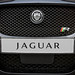 "2013 Jaguar XFR front grill.jpg • <a style=""font-size:0.8em;"" href=""https://www.flickr.com/photos/78941564@N03/8573120934/"" target=""_blank"">View on Flickr</a>"