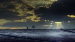 Winter in spring (Eric Goncalves) Tags: trees winter sunset sky ice nature beautiful field clouds landscape evening frozen spring nikon view earth perspectives gloucestershire rays sunsetting array