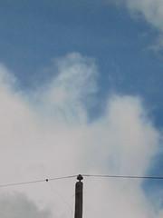 HAPPY EASTER! JOYEUSES PAQUES! (jacinthe desilets) Tags: macro love nature clouds canon photography big flickr fuji foto shot award super fave ciel qubec nuage flick hdr cloudporn vos merveille clicks spitit favoris supershot abigfave megashot