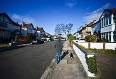 ...walking in suburbia... (Dafydd Penguin) Tags: street dog bristol walking nikon suburbia streetshots sigma suburbs f28 d600 sigma14mm