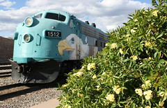 Lady Banks Roses at depot (Verde Canyon Railroad) Tags: flowers az trainstation engines april depot locomotive fp7 verdecanyonrailroad verdevalley yellowroses inbloom passengertrain emd 1512 springinbloom ladybanksroses clarkdalearizona vintageengines gmelectromotivedivision arizonaslongestrunningnatureshow april2013 gmfp7 1953trainengine