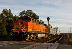 BNSF Inspection Special at Pleasant Grove (Amtrakdavis22) Tags: railroad train special searchlight signal bnsf passengertrain inspectionspecial upsacramentosubdivision pleasantgrovecalifornia