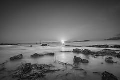 Black And White Photography Beach Sunset White Black Beach Nature