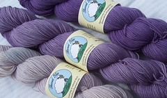 Purple Sock Yarn (ShearedBliss) Tags: wool yarn dye dyeing fiber handdyed fiberarts naturaldye