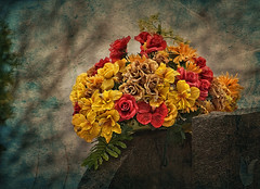 Bring me Flowers (jta1950) Tags: flowers plant painterly texture cemetery grave graveyard petals yellowflower gravestone reef joelolives