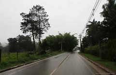 Carretera El Carmen - La Ceja (Ivan Mauricio Agudelo Velasquez) Tags: road ruta calle colombia strada carretera via route arbor estrada runway antioquia rodovia autobhan guadual