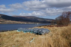 Buoy,buoy and buoy (pam m1) Tags: landscapes buoys lochs buoyant yearend13