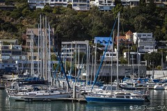Gordons Bay Marina (Bill Davies (SA)) Tags: ocean travel sea marina boats capetown cape gordonsbay berth yatchts