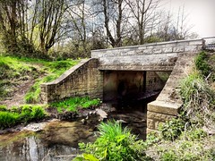 Restored bridge... (Anthony Beyga) Tags: awardwinning itsourworld islagladstone projectdirt mablanecommunitywoodland merseyforrest liverpoolechoenvironmentawards