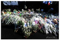 Nice attack | Attentat de Nice (Roland Macri) Tags: france fleurs nice europe hommage fra promenadedesanglais terrorisme attentats recueillement france|france nice|nice