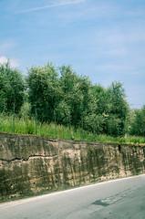 Olivenhain (kkris281264) Tags: landschaft natur tag oliven olivenbaum olivenbume olive tree trees mauer strasse street wall