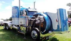 Peterbilt American Truck