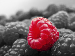 raspberry (Mark Schlicht) Tags: raspberry fruit mono colour