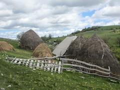 Haystacks, farm at Vidikovac, Uvac Nature Reserve, Serbia (Paul McClure DC) Tags: uvac naturereserve serbia srbija zlatibor druinie vidikovac sjenica balkans may2016 scenery