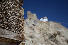 The Palace, Leh (dave beere) Tags: india ladakh buddism buddah monastery gompa