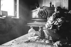 Cannibal's Residency (C O L O U R S O F D E C A Y) Tags: abandoned abandonedplaces urbex urbanexploration exploration infiltration piano blackandwhite flower bw canon