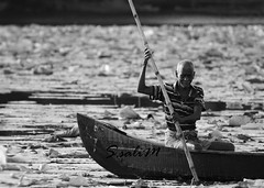 Morning vibes!! #lotus#boatman#lake#photography#people#kerala#godsowncontry (sharukhsalim) Tags: lotus boatman lake photography