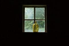Yellow bottle in a window - Explored! (Peg Becks) Tags: yellowbottle windowview centered inabarnwindow dreams whileyouweresleeping odc