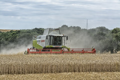pushing on (David Feuerhelm) Tags: nikkor combine harvester colour farming claas nikon essex england farm d7100 countryside