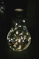 Marlne (Lauryanne) Tags: light lumire macro detail close clair obscur